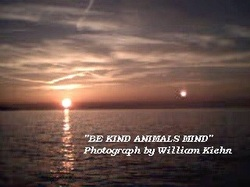 Be Kind, People, Animals, and Planet Earth Mind.